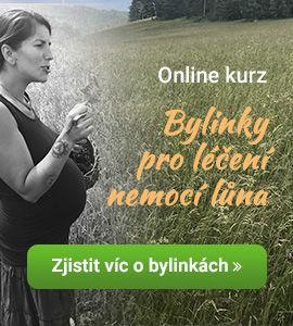 Online kurz obylinkách pro ženy snemocemi lůna